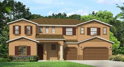 28966 Picana Lane, Wesley Chapel, FL 33543 - MLS#: T3145305