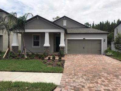 6233 English Hollow Road, Tampa, FL 33647 - #: T3145597