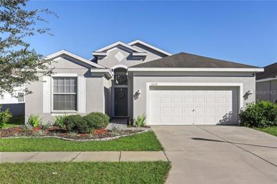 11231 Madison Park Drive, Tampa, FL 33625 - MLS#: T3145646