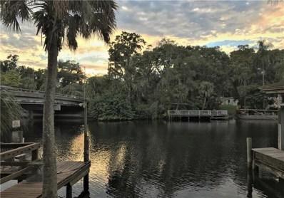 6904 N River Boulevard, Tampa, FL 33604 - #: T3145721