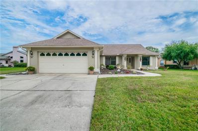 325 Palmdale Drive, Oldsmar, FL 34677 - MLS#: T3145817
