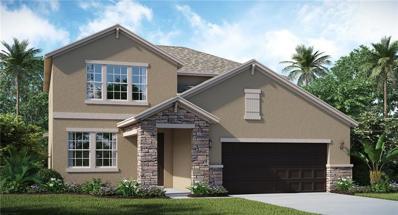 13645 Ashlar Slate Place, Riverview, FL 33579 - #: T3145886