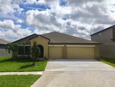 14013 Arbor Pines Drive, Riverview, FL 33579 - #: T3145942