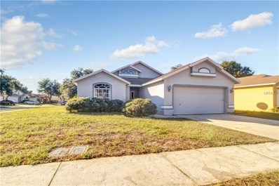 4630 Copper Lane, Plant City, FL 33566 - #: T3145945