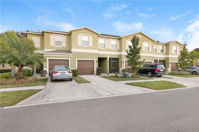 1709 Ivory Goose Place, Ruskin, FL 33570 - #: T3145959