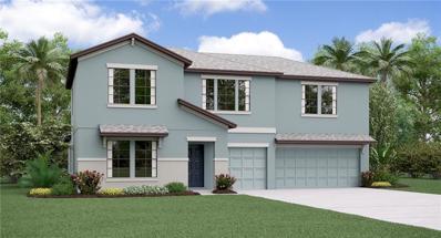 14009 Arbor Pines Drive, Riverview, FL 33579 - #: T3145966