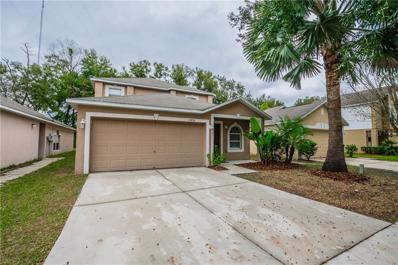 13824 Gentle Woods Avenue, Riverview, FL 33569 - #: T3145984