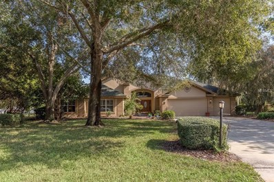 8922 Skymaster Drive, New Port Richey, FL 34654 - MLS#: T3146012