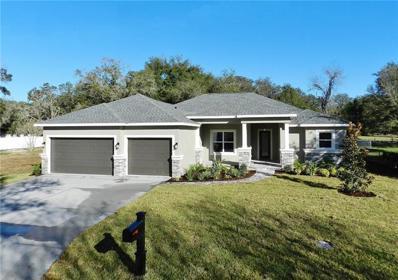 104 Hidden Lake Drive, Brandon, FL 33511 - MLS#: T3146091