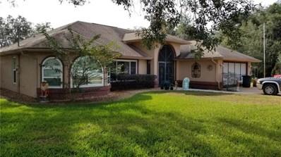 11054 Frigate Bird Avenue, Weeki Wachee, FL 34613 - MLS#: T3146162