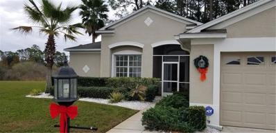 11802 Wayside Willow Court, Hudson, FL 34667 - MLS#: T3146370