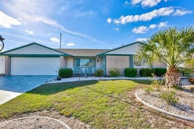 1202 Desert Hills Drive, Sun City Center, FL 33573 - #: T3146375