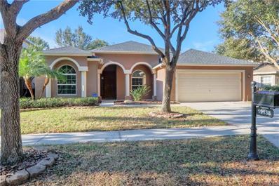 19138 Dove Creek Drive, Tampa, FL 33647 - MLS#: T3146474