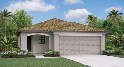 10229 Carloway Hills Drive, Wimauma, FL 33598 - MLS#: T3146492