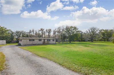 17930 Dogwood Drive, Lutz, FL 33558 - #: T3146905
