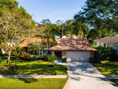 3133 Lake Valencia Lane E, Palm Harbor, FL 34684 - #: T3147148