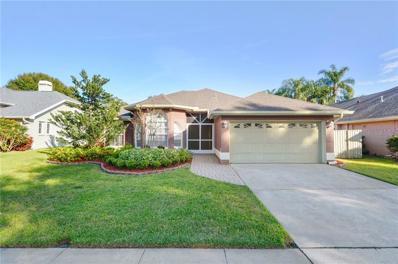 717 Sunflower Drive, Palm Harbor, FL 34683 - #: T3147399