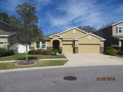 13420 Canopy Creek Drive, Tampa, FL 33625 - MLS#: T3147656