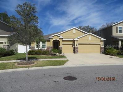 13420 Canopy Creek Drive, Tampa, FL 33625 - MLS#: T3147656