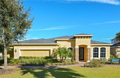 11311 Emerald Shore Drive, Riverview, FL 33579 - MLS#: T3147818
