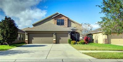 11539 Tangle Creek Boulevard, Gibsonton, FL 33534 - #: T3148230