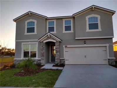 10652 Planer Picket Drive, Riverview, FL 33569 - MLS#: T3148343