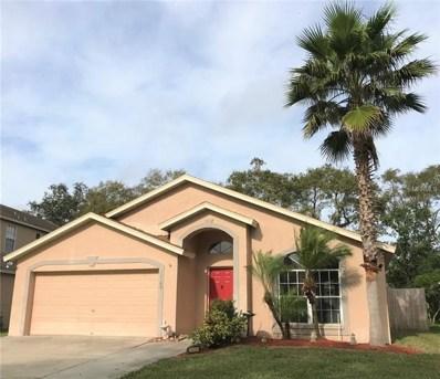 11105 Indian Oaks Drive, Tampa, FL 33625 - #: T3148938