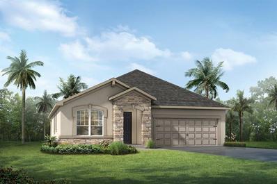 13015 Rain Lily Drive, Riverview, FL 33579 - #: T3149291