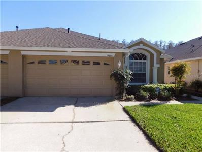 19356 Haskell Place, Land O Lakes, FL 34638 - MLS#: T3149451