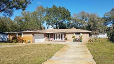 20425 Moss Bend Court, Lutz, FL 33558 - MLS#: T3149630