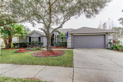 10746 Ayrshire Drive, Tampa, FL 33626 - MLS#: T3149822