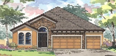 8110 Water Color Drive, Land O Lakes, FL 34638 - MLS#: T3149905