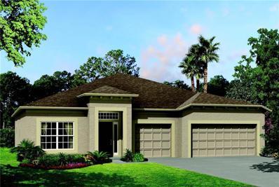 4084 Mellon Drive, Odessa, FL 33556 - #: T3150115