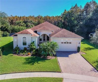 8724 Preston Woods Court, Land O Lakes, FL 34638 - MLS#: T3150160