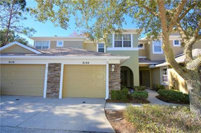 8160 Stone View Drive, Tampa, FL 33647 - MLS#: T3150183
