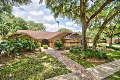 11504 Tullamore Place, Temple Terrace, FL 33617 - #: T3150643