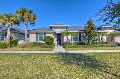 11303 Peckham Place, Tampa, FL 33625 - #: T3151077