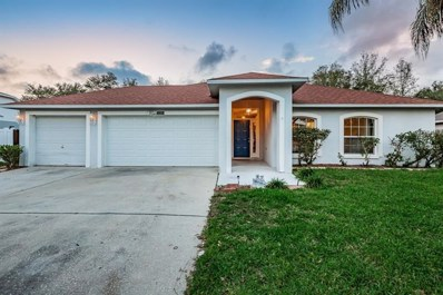11313 Andy Drive, Riverview, FL 33569 - #: T3151360