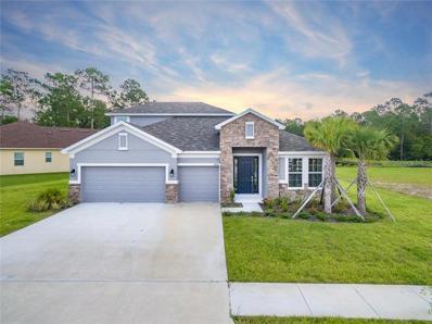 27266 Hawks Nest Circle, Wesley Chapel, FL 33544 - MLS#: T3151466