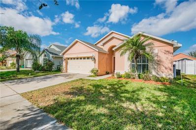 2554 Crown Ridge Circle, Kissimmee, FL 34744 - #: T3151521