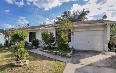 1203 Piney Branch Circle, Valrico, FL 33594 - MLS#: T3151572