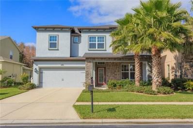 4347 Vermillion Sky Drive, Wesley Chapel, FL 33544 - MLS#: T3151673