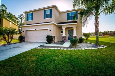 2606 Holly Bluff Court, Plant City, FL 33566 - #: T3151890