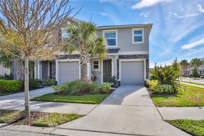 10405 Yellow Spice Court, Riverview, FL 33578 - MLS#: T3152258