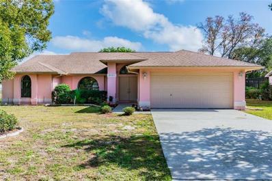 8221 Pagoda Drive, Spring Hill, FL 34606 - #: T3153359
