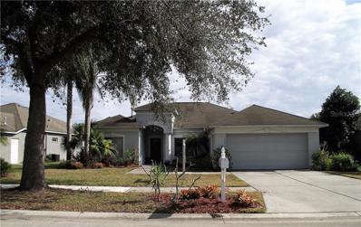 3503 Pine Top Drive, Valrico, FL 33594 - #: T3153442