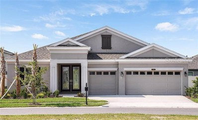 21767 Briske Morning Avenue, Land O Lakes, FL 34637 - #: T3154917