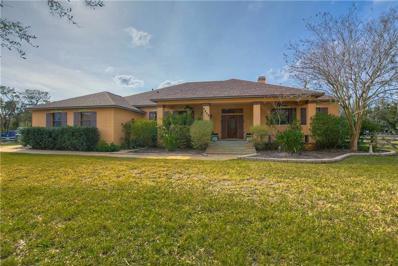 8017 Riverwood Estates Place, Riverview, FL 33569 - #: T3155077