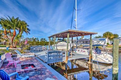 6527 Solitaire Palm Way, Apollo Beach, FL 33572 - #: T3155452