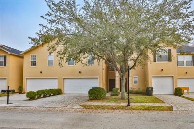 6232 Clifton Palms Drive, Tampa, FL 33647 - #: T3155484
